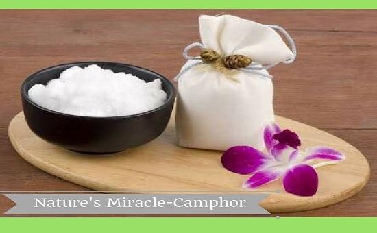 Nature's Miracle- Camphor