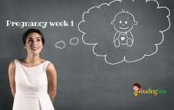 pregnancy-week-1-budding-star