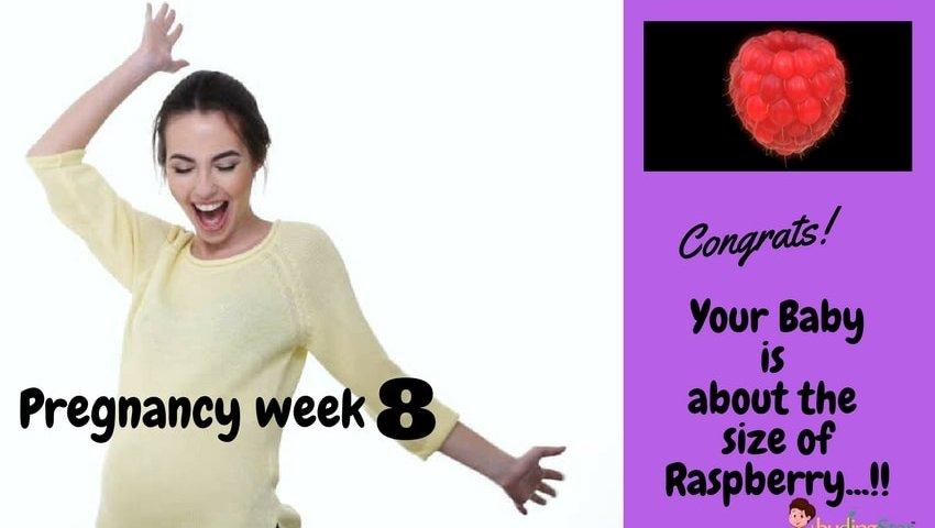 Pregnancy week 8