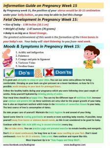 pregnancy-week-15-budding-star
