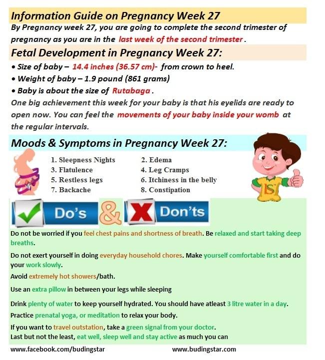pregnancy-week-27-budding-star