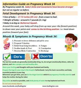 pregnancy-week-34-budding-star