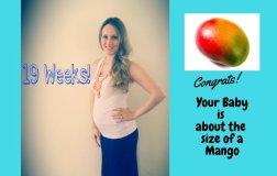 Pregnancy week 19