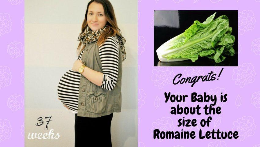Pregnancy week 37