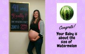 Pregnancy week 41