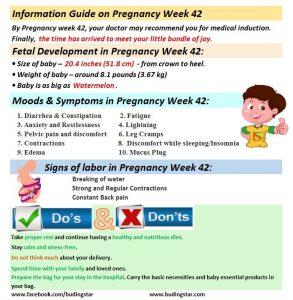 Pregnancy week 42 Budding Star
