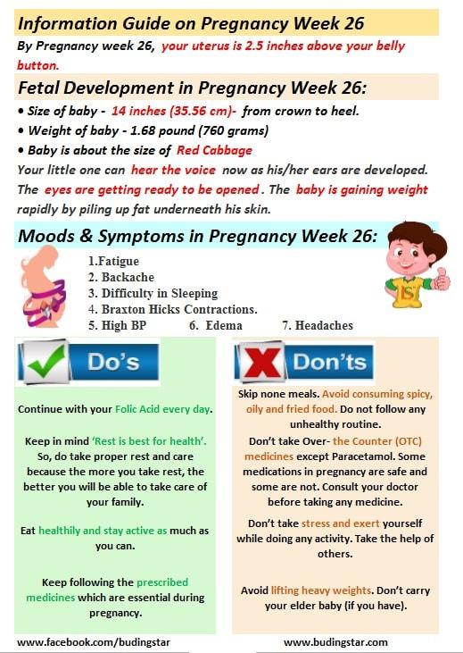 pregnancy-week-26-budding-star